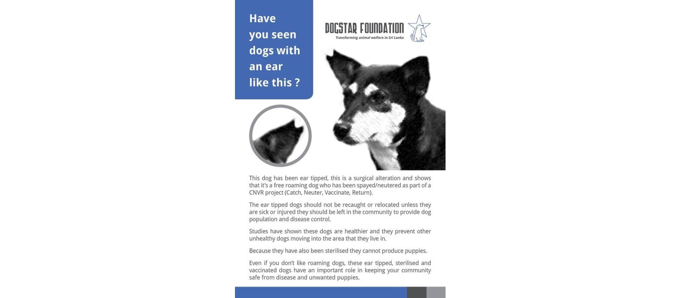 ear tipping english leaflet