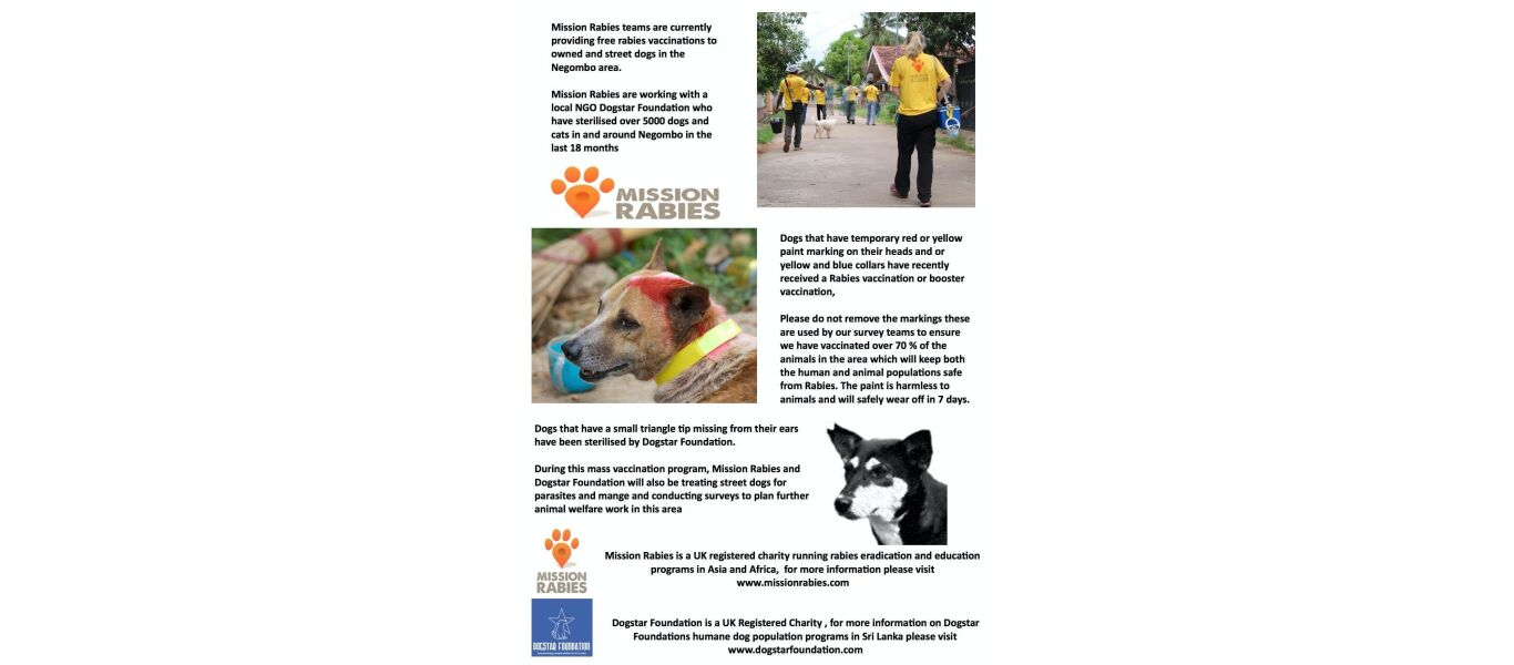 mission rabies 2016 dogstar foundation leaflet