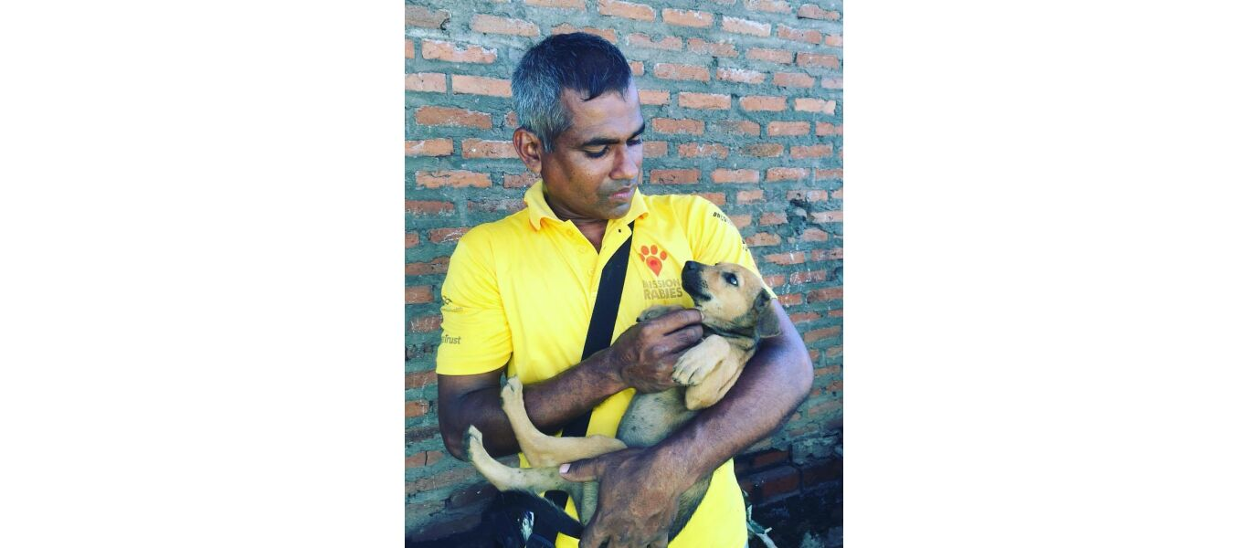 mission rabies 2016 dogstar foundation staff holding a street puppy